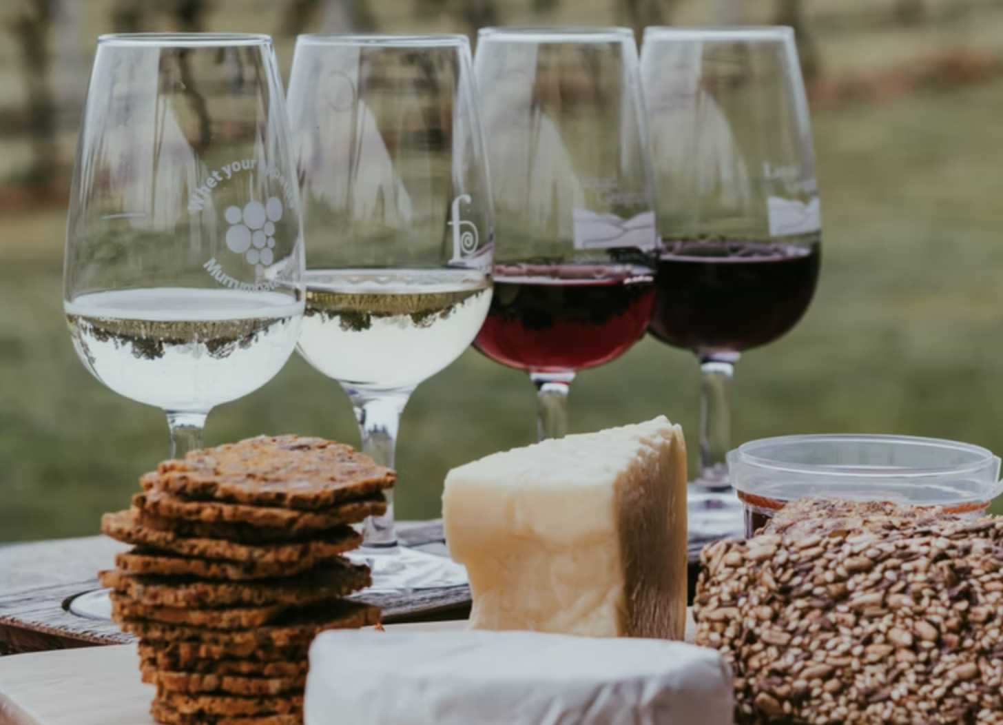 best wines to go with cheese